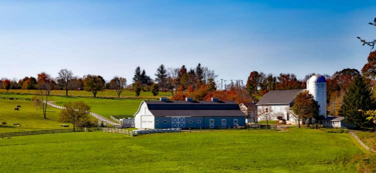 Farm In Connecticut